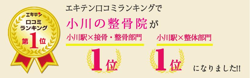 エキテン口コミランキングで小川の整骨院が東京都小平市エリア1位、仙川エリア1位になりました!